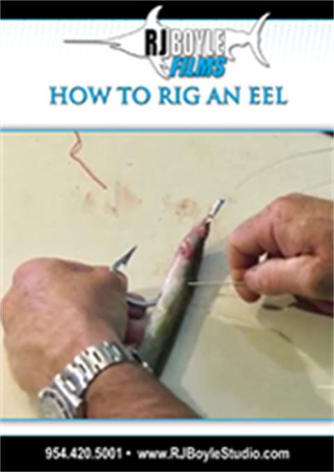 How To Rig An Eel