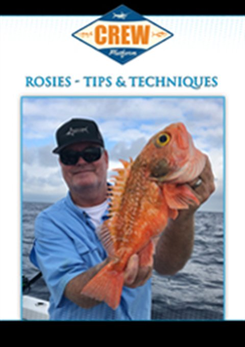 Rosies - Tips and Techniques