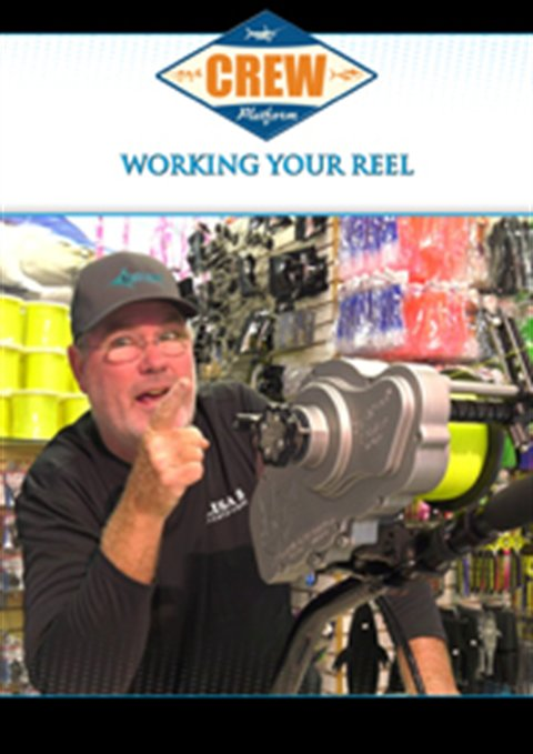 Working Your Reel